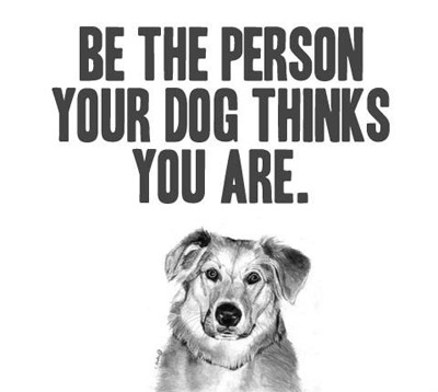 Dog-Picture-Quote